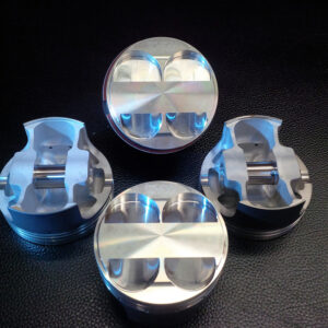FVC Piston Set